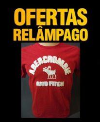 Camiseta Abercrombie (P) (M) (GG)